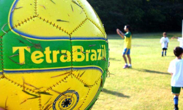 tetra Brasil Instagram